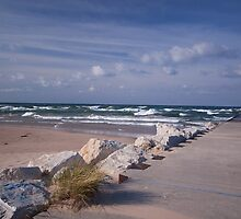 Lake Michigan Shoreline by Rick Montgomery