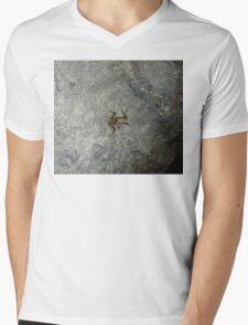 Cave Weta, Zealandia, New Zealand Mens V-Neck T-Shirt