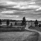 Rural Road ,Victoria   by Christine Wilson
