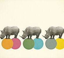 Rambling Rhinos by Cassia