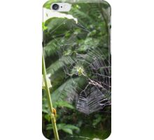 Green Orb Web Spider iPhone Case/Skin