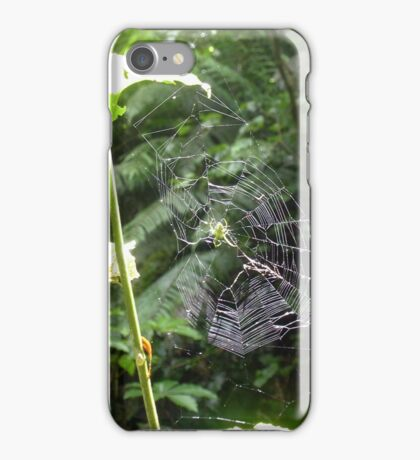Green Orb Web Spider iPhone Case/Skin