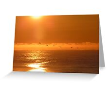 Birds flying into the golden sun Greeting Card