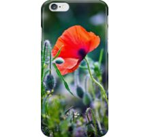One Wild Poppy iPhone Case/Skin