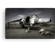 Harrier Canvas Print
