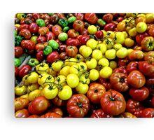 Heritage Tomatoes I Canvas Print