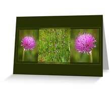 Meadow Thistle - triptych Greeting Card