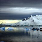 Ice Station Zebra, Antarctica by John Dalkin