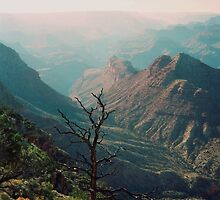 The Grand Canyon by Kymbo