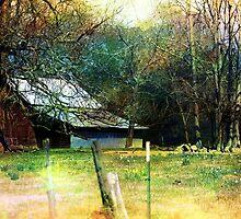 Barn Charm by Darlene Lankford Honeycutt
