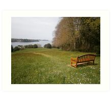 Bench in a meadow Art Print