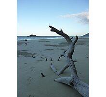 Cape Tribulation Beach Photographic Print