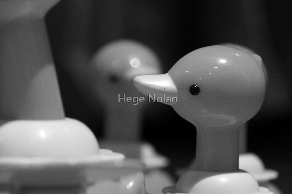 Follow the leader by Hege Nolan