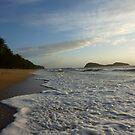 Palm Cove Beach by Jason Langer