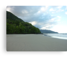 Where the Rainforest meets the Reef Canvas Print