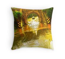 Are We Gonna Make It? Throw Pillow