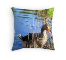 Canadian Geese..just looking around Throw Pillow