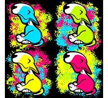 Colour Splash Innocent English Bull Terrier Puppies Photographic Print
