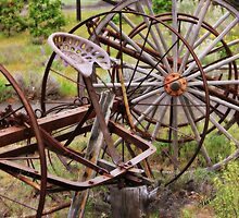 Old Farm Equipment by Sharon Johnston