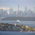 Sydney Harbour by Kymbo