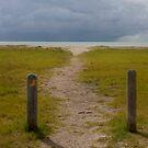 The Path by Regenia Brabham