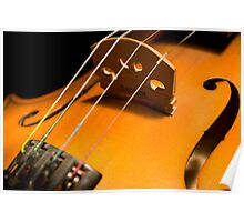 An intimate image of a Fiddle Poster