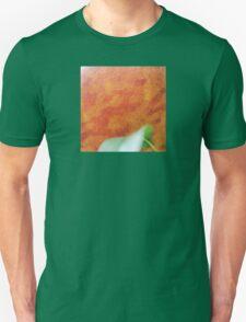 The Giant Peach Unisex T-Shirt