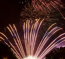 Fireworks - 4 of 9   by electron