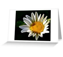 May a Daisy Brighten Your World Greeting Card