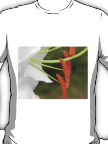 Anther & Filament of a White Lily T-Shirt