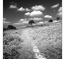 Dunstable Downs by MoGeoPhoto