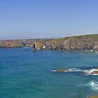 Cornish cliffs by Steve plowman