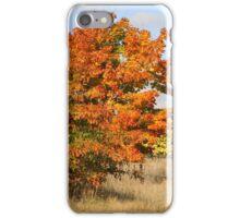 Blaze of Glory iPhone Case/Skin