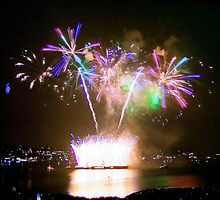 Gasworks Park Fireworks in Seattle, WA by Barb White