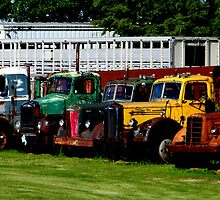 Oldies in a Row by Tiffany Rach