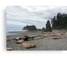Ruby Beach - Washington Canvas Print