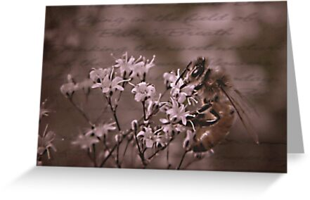 What's Buzzen In The Wild Baby's Breath by Shelly Harris