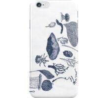 corals and seaweed iPhone Case/Skin