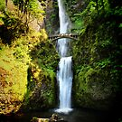 Multnomah in Wide Angle by Barbara  Brown