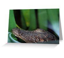Baby Croc Greeting Card