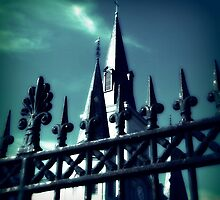 french quarter st louis cathedral  by leapdaybride