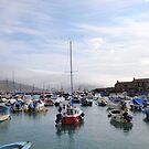 Warm Misty Morning at  Lyme Dorset UK by lynn carter
