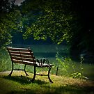 The Bench by the Stream by ericseyes