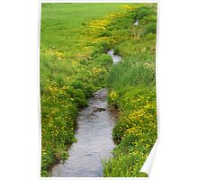 The Headwaters of the Allegheny River Poster