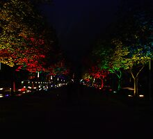 Unter den Linden at night by Vic Sharp