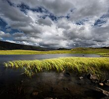 Tewit Tarn by David Robinson