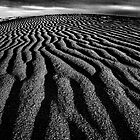 Dunes Sant Pere Pescador by Howard CB Sayer