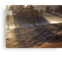 'Morning amongst the Mist' Canvas Print