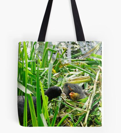 Adult Coot Feeding a Young Chick Tote Bag