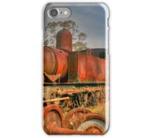 Rusty Treasure iPhone Case/Skin